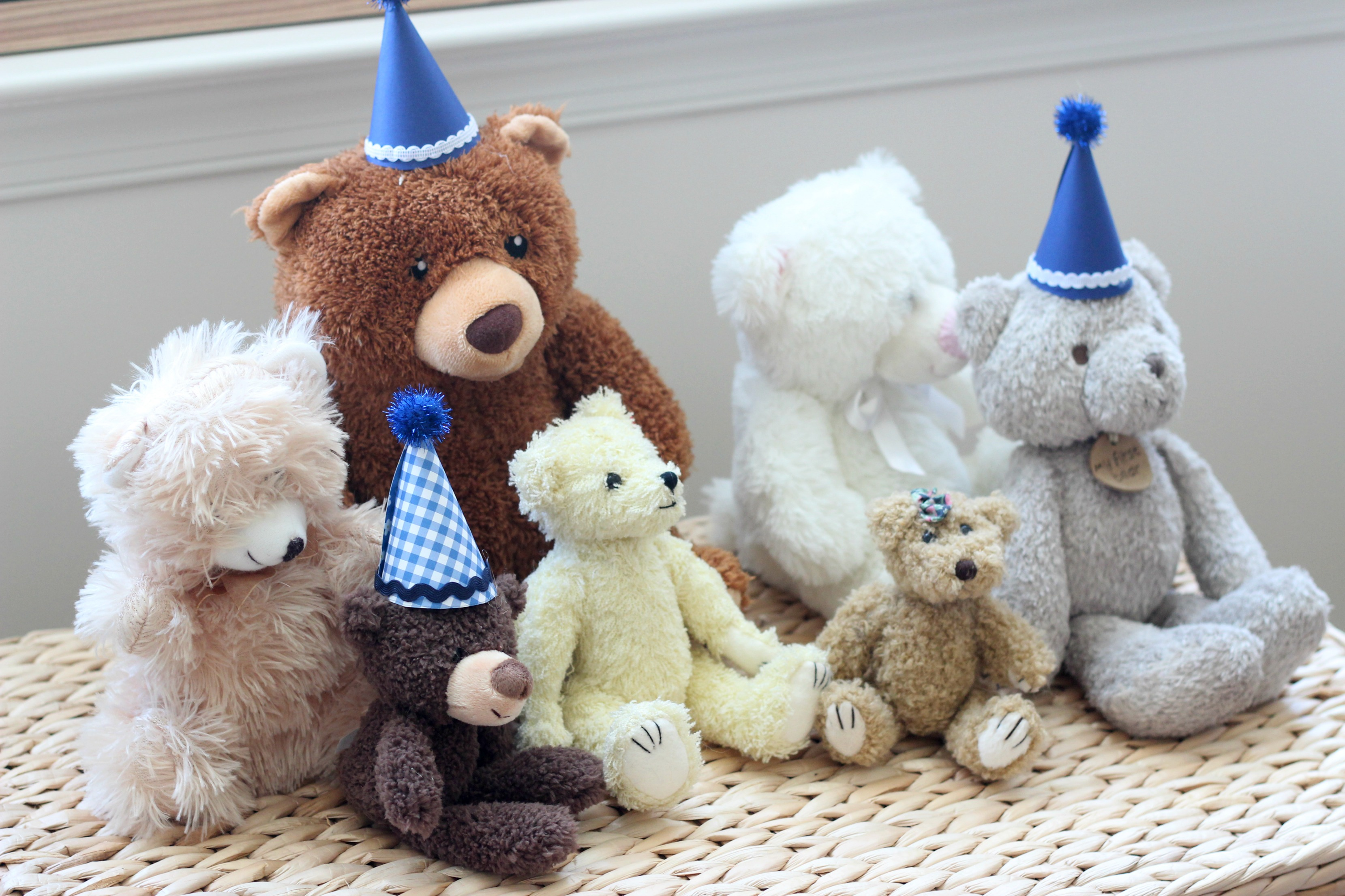 A Teddy Bear Party for Dominick's First Birthday