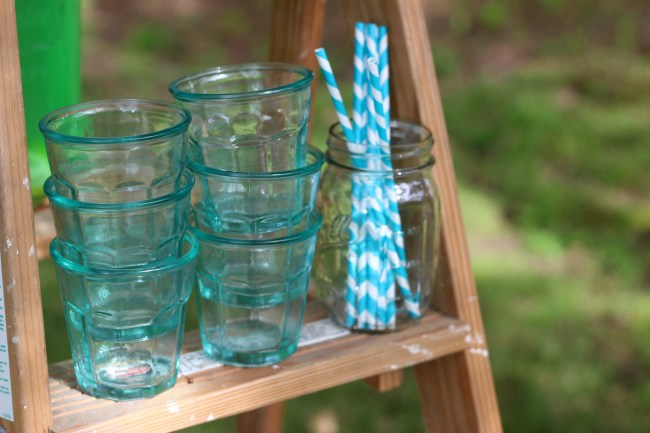 Earth Day Party - Recycled Glassware