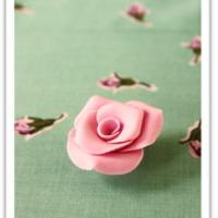 10 Easy Steps to creating Beautiful Sugar Paste Roses