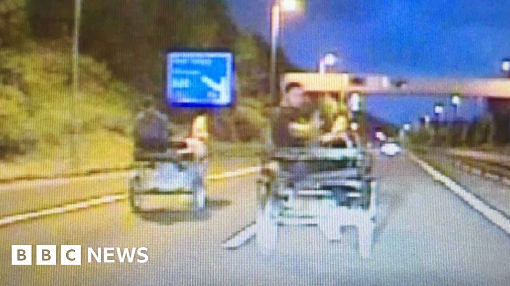 Men caught riding horse and trap on M4 near Port Talbot - BBC News