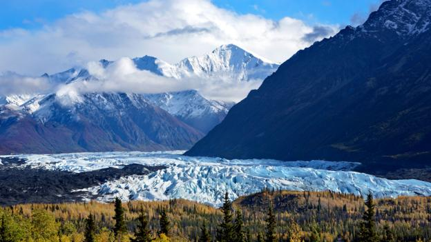 Fashionable Girl Hd Wallpaper Bbc Travel Journey Into The Alaskan Wild