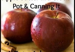 Canning Crock Pot Apple Butter- A Tutorial