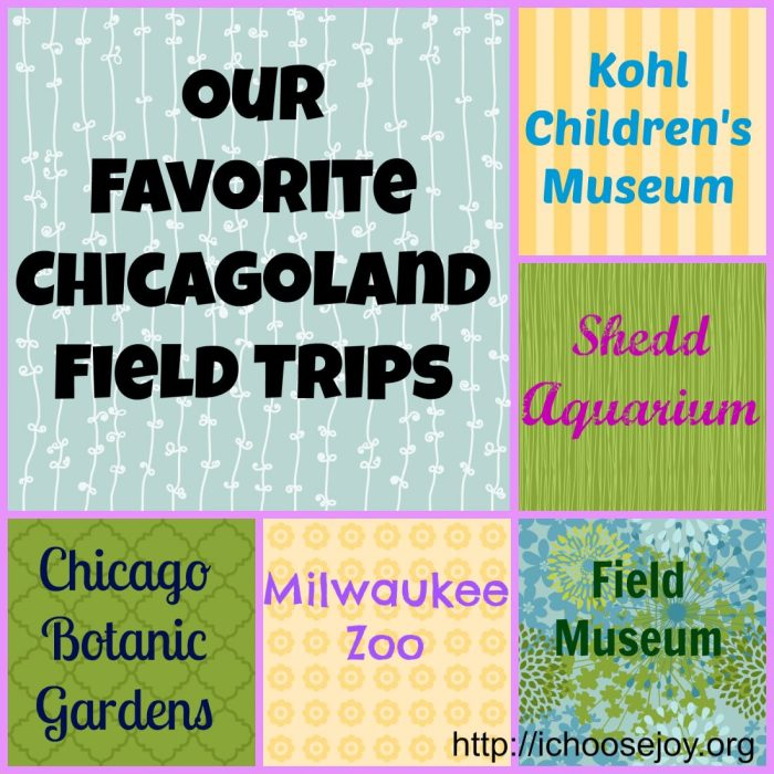 Chicagoland Field Trip Collage
