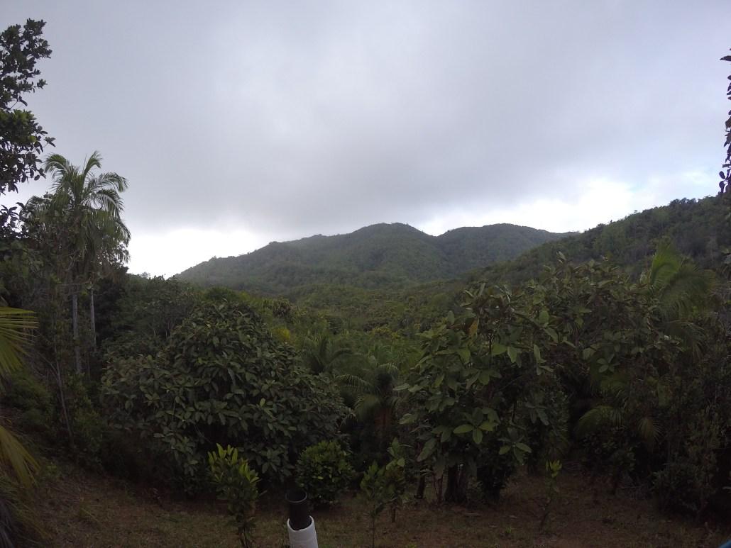 Ein wunderbarer Aussichtspunkt, von dem aus man die grünen Hügel Praslins bewundern kann.