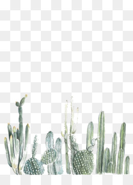 Cute Watercolor Wallpaper Cactus Png Amp Cactus Transparent Clipart Free Download