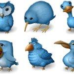 Ugly birds