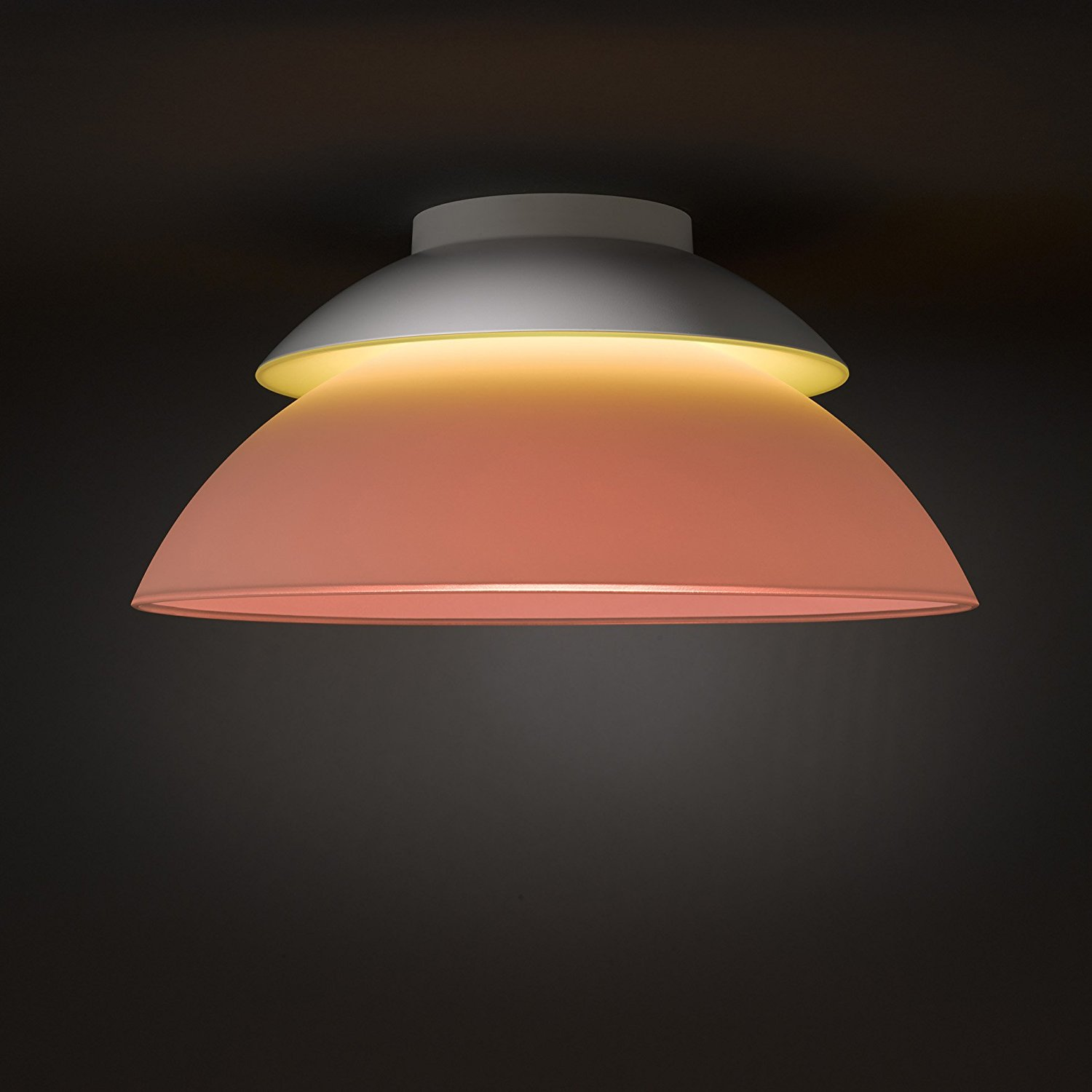 Led Lampen E27 10 Watt Philips Hue Supported Lights And Devices Iconnecthue