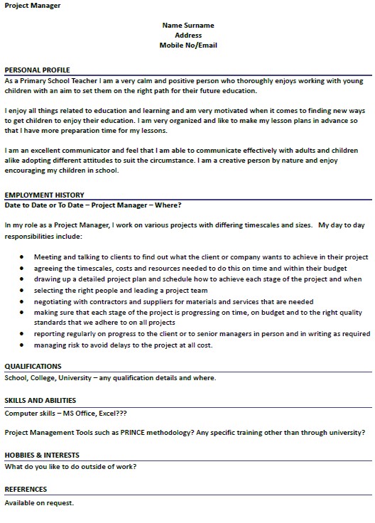 cv personal statement examples project manager