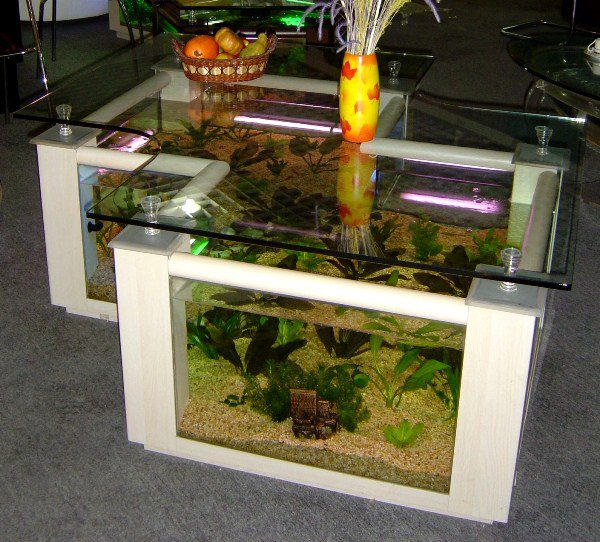 Couchtisch Glas Amazon Cool Aquarium Coffee Tables - Icreatived