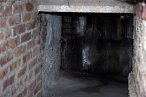 cellar-1