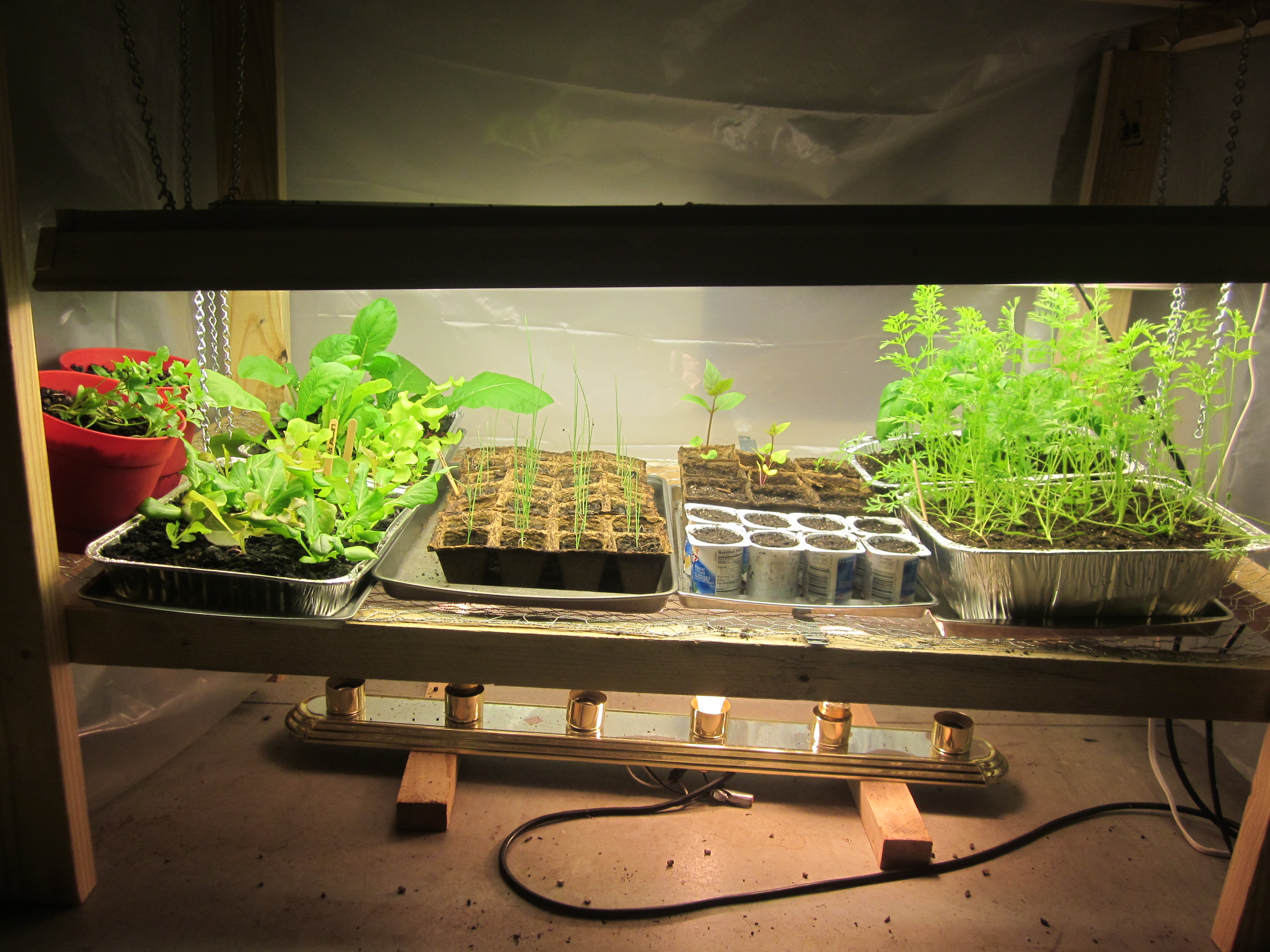 Grow Lights For Indoor Plants Grow Light Idaho Gardening