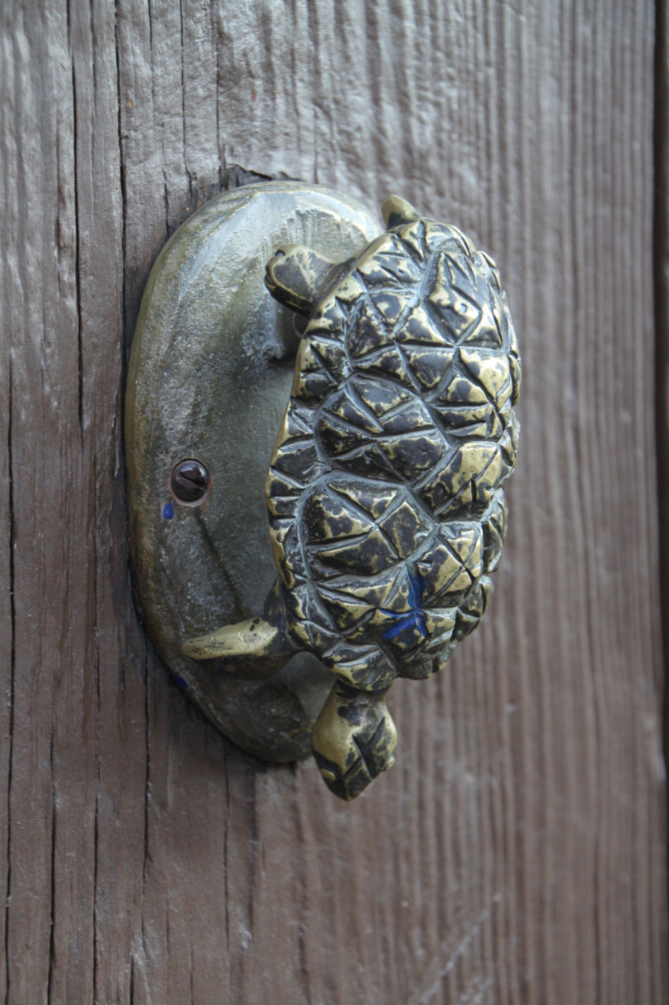 Turtle Door Knocker I Dig Hardwareknock The Vote I Dig Hardware