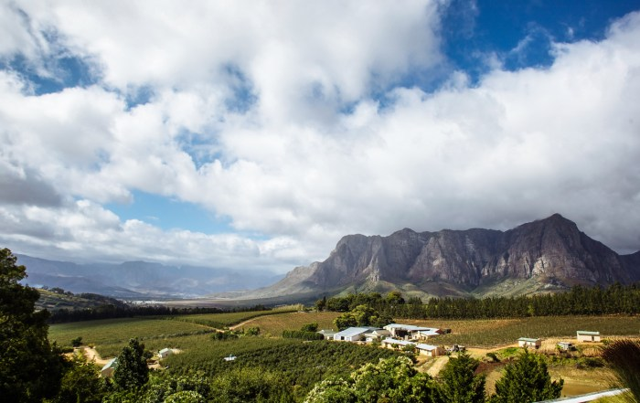western-cape-wedding-venues-south-africa (1)