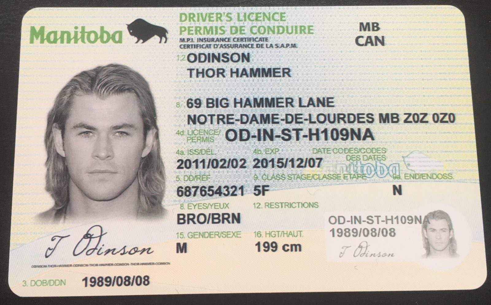Manitoba Drivers License  ID Viking