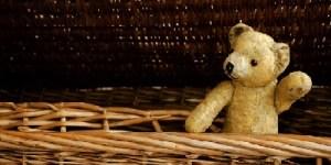 cesto orso