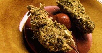 """""""Счастливое детство"""": на Тенерифе 2-х летний мальчик отравился кокаином и марихуаной"""