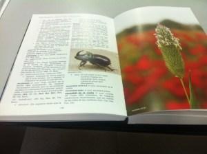 llibre els éssers naturals