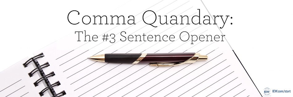 Comma Quandary The #3 Sentence Opener Institute for Excellence in