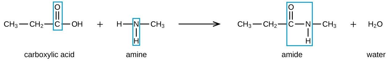 C146 \u2013 Synthetic polymers \u2013 IGCSE AID