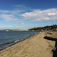 Alki Beach Park - Alki - 95 tips