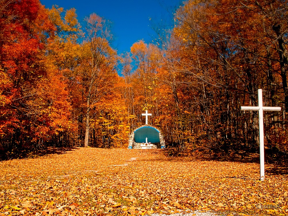 Fall Scenes For Ipad Wallpaper Quot Leaf Covered Path Fall Autumn Scenes Cemetery Altar
