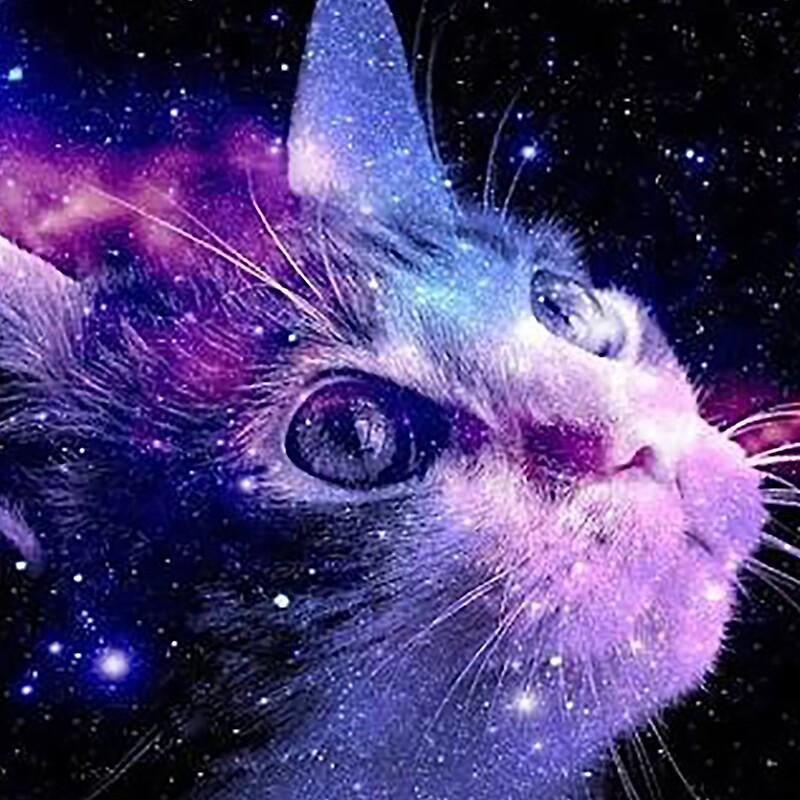 Wallpapers Hd Hello Kitty Cat In Galaxy Www Pixshark Com Images Galleries With A