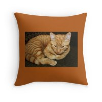 """Kitty Cat Pillow"" Throw Pillows by WeeZie 