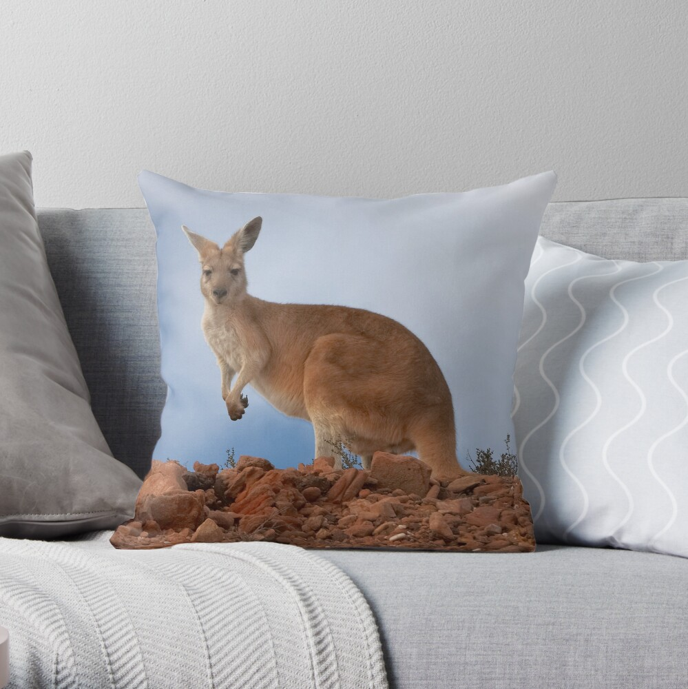Best Pillows Australia I Am Australian Euro