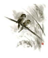 """Sparrows sumi"