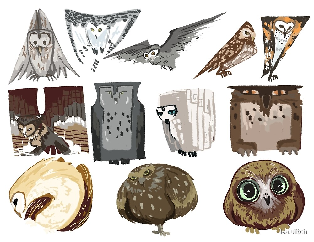 Owl Shapes\