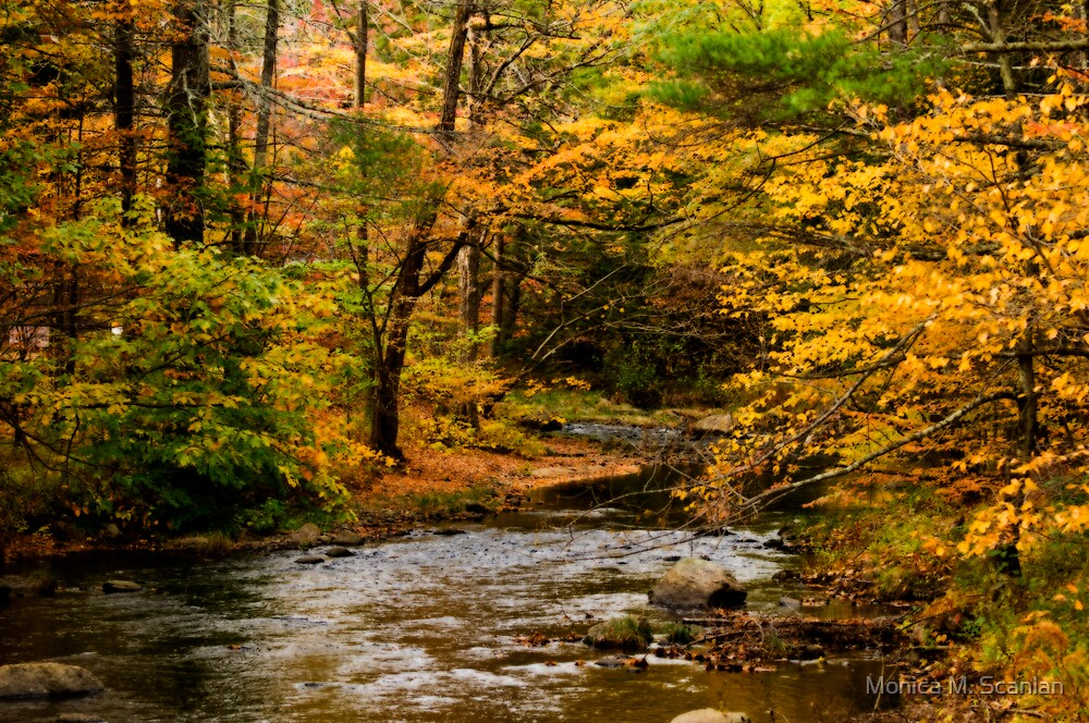 New Hampshire Fall Foliage Wallpaper Quot Autumn Stream Quot By Monica M Scanlan Redbubble