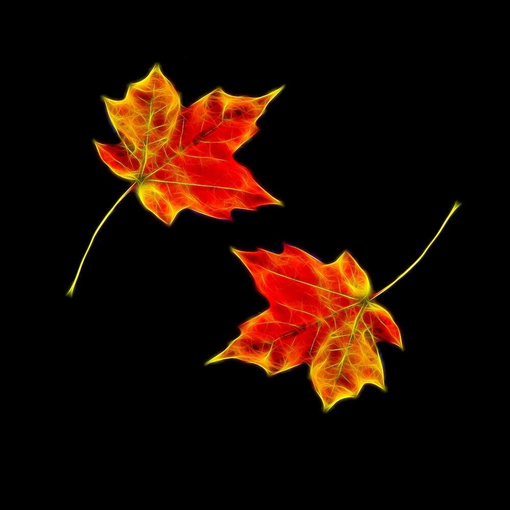 Falling Leaves Wallpaper For Iphone Quot Autumn Leaves Black Background Quot By 7akami Redbubble