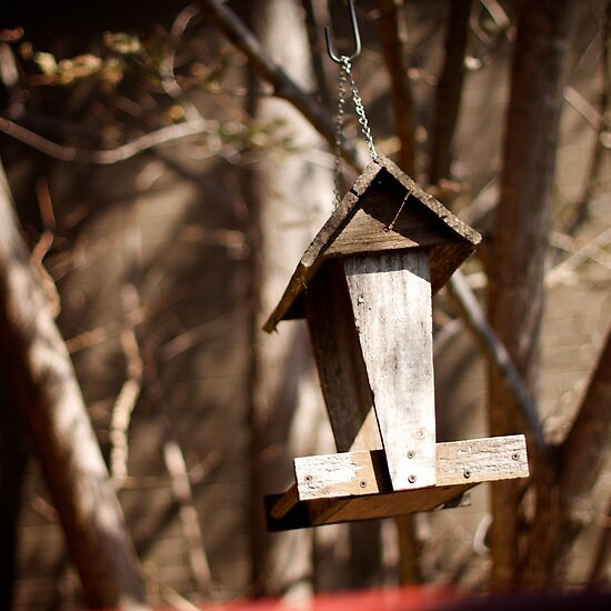 The Empty Birdhouse at Café Beaz in Healesville