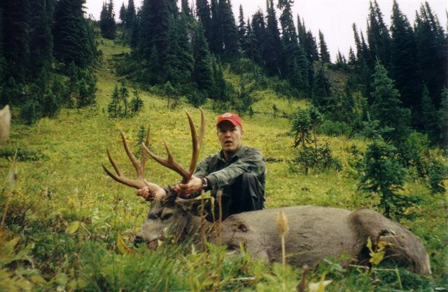 Image For Moose Hunting In Canada Top Outfitters From All Regions Of