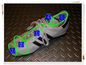 靴解剖トップ