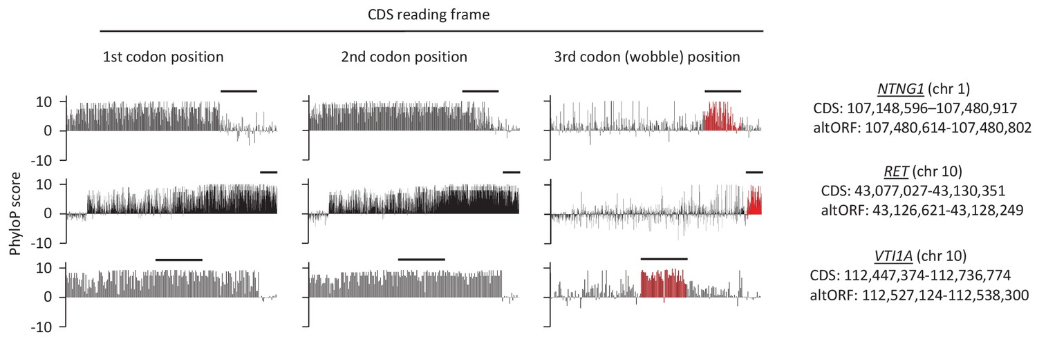 Deep transcriptome annotation enables the discovery and functional