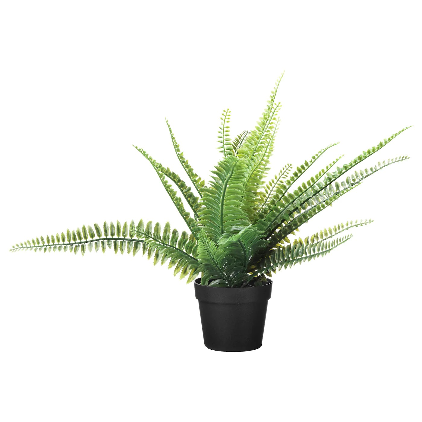 Ikea Palm Tree Artificial Flowers Plants Ikea Ireland Dublin