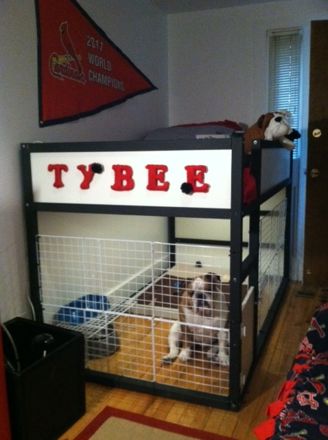 Ikea Cheap Bed The Dog Suite - Ikea Hackers