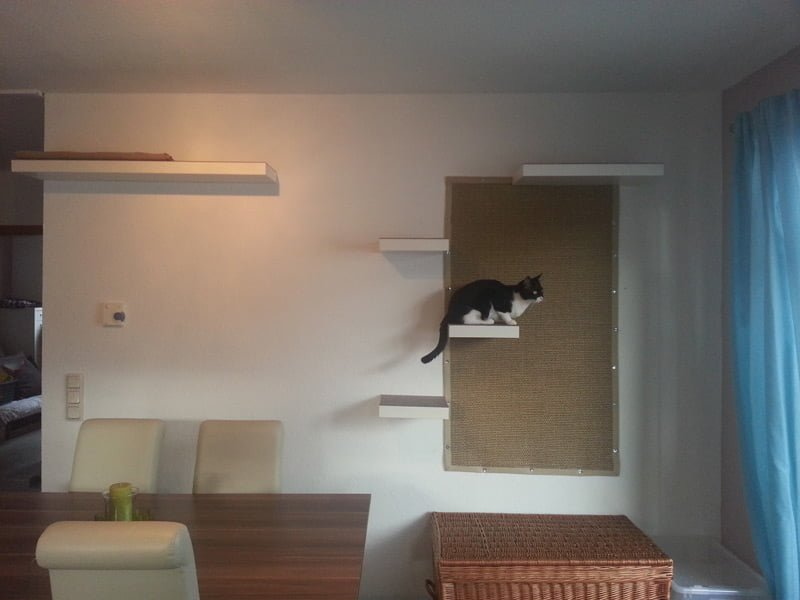 Kallax Schrank Stairway To Cat Heaven - Ikea Hackers