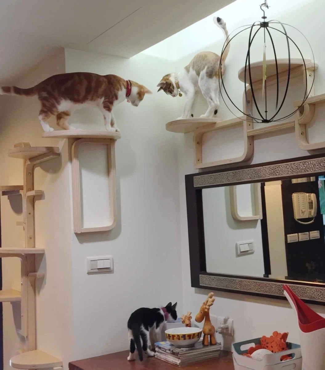 Möbel Aus Holzstämmen Cat Tree By Frosta X Ikea Hackers
