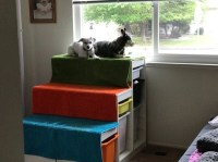 DIY dog window perch with steps - IKEA Hackers - IKEA Hackers