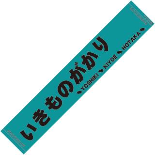 towel-green