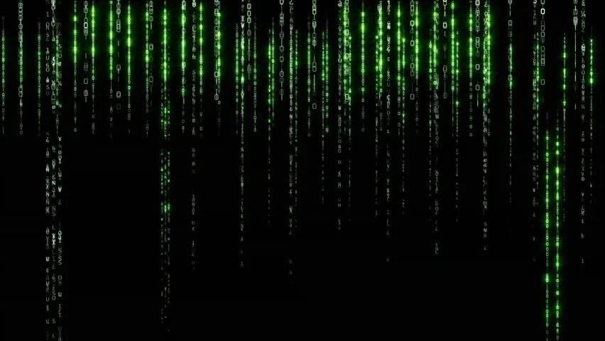 Matrix Falling Code Wallpaper Download Data Stream Matrix Vertically Scrolling Numbers Stock