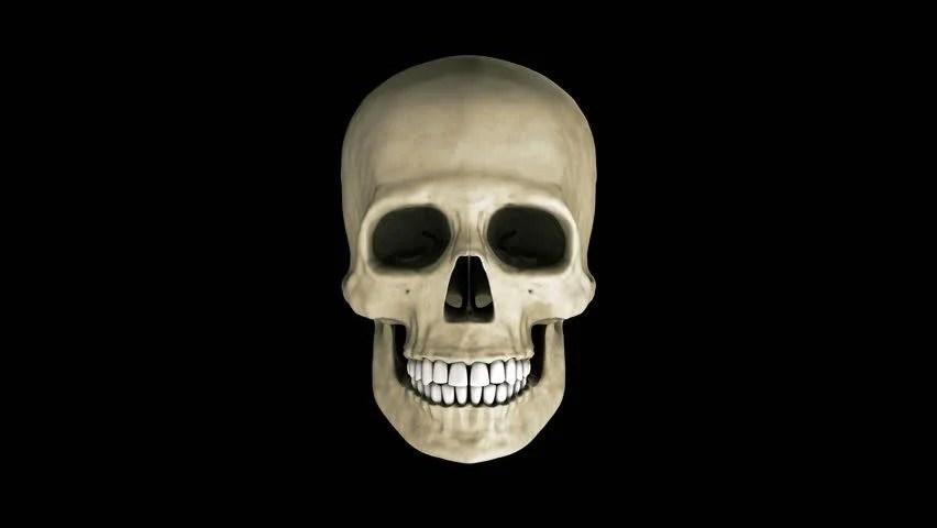 Skeleton Head Wallpaper 3d Laughing 3d Skull Loop Stock Footage Video 2844547