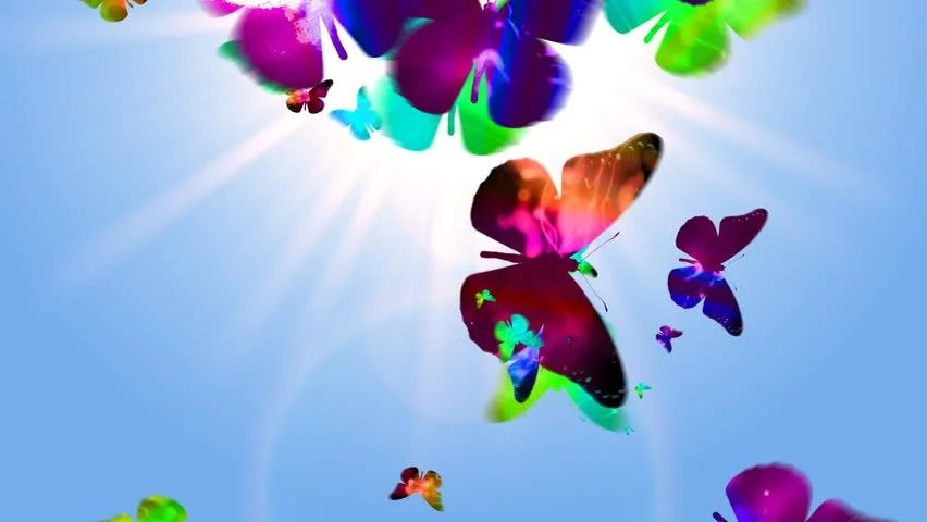 3d Moving Wallpaper Pictures Butterfly Footage Page 8 Stock Clips