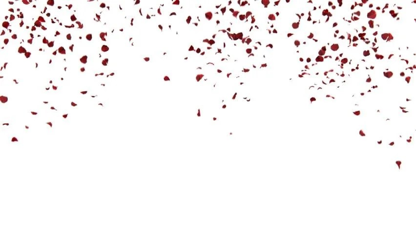 3d Falling Leaves Animated Wallpaper Colorful Sprinkles Falling On White Surface In Slow Motion