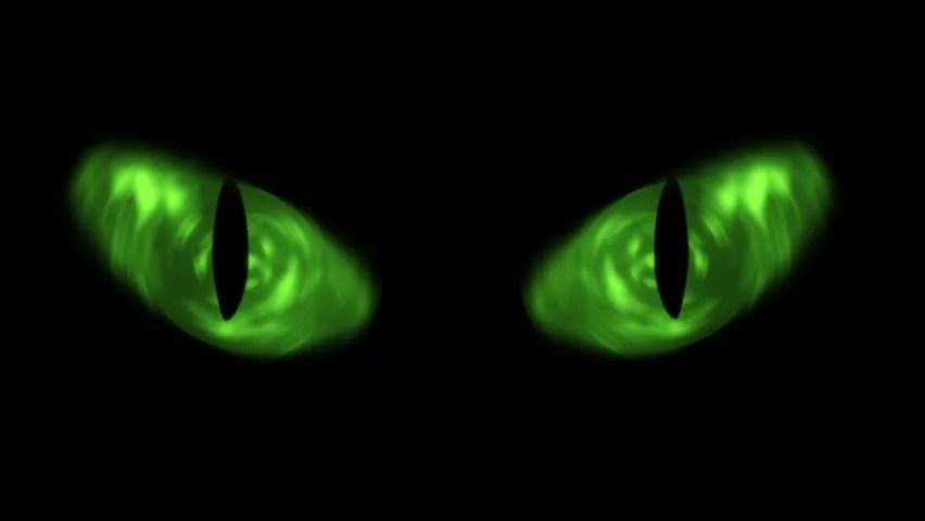 Snow Falling Wallpaper Download Cat Eyes Blinking Loop Animation Of Cat Eyes Blinking
