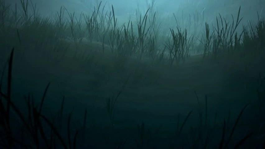 Under The Sea Wallpaper Hd Creepy Ocean Footage Stock Clips