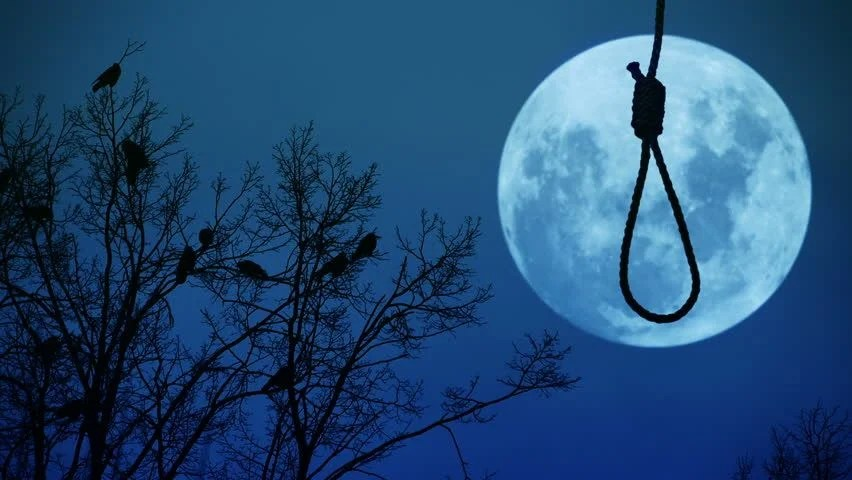 Halloween Black Cat Wallpaper Hanging Noose On A Branch With The Moon In The Background