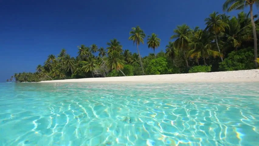 Shutterstock Hd Wallpapers Crystal Clear Water In Front Of Tropical Island Stock